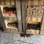 7. Hier haben wir die Kammern des Insektenhotels mit Ton, Bambusröhrchen, Tannenzapfen und gebohrten Holzstücken gefüllt.